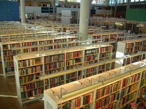 books-463599-m