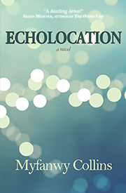 Echolocation: a novel by Myfanwy Collins
